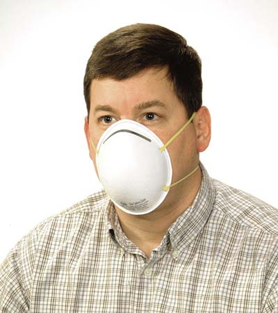 N95 Dust Mask w/Band 20/bx
